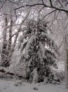 Winter 2010 022