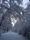 Winter 2010 029