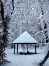 Winter 2010 037