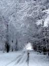 Winter 2010 046