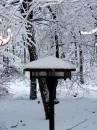 Winter 2010 048