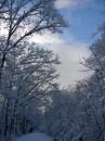 Winter 2010 053
