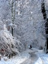 Winter 2010 066