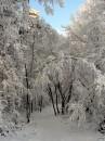 Winter 2010 087