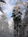 Winter 2010 088