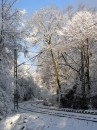 Winter 2010 091