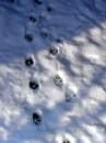 Winter 2010 094