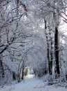 Winter 2010 095