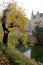Fosa miejska jesiennie