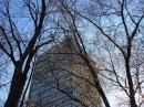 Wieżowiec przy Traugutta